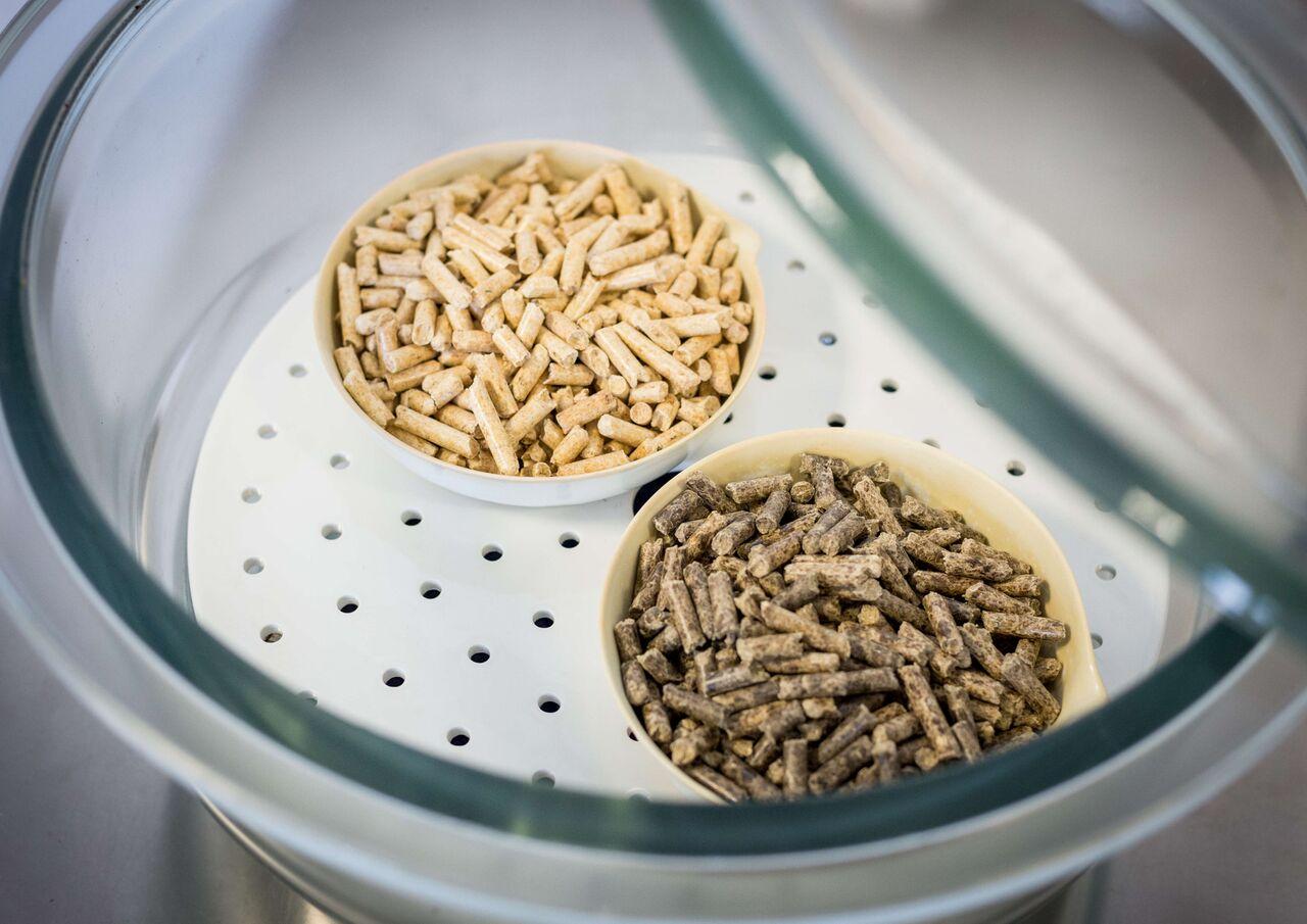 Proprietà Cenere Di Legna la qualità del pellet: conformità alla normativa tecnica