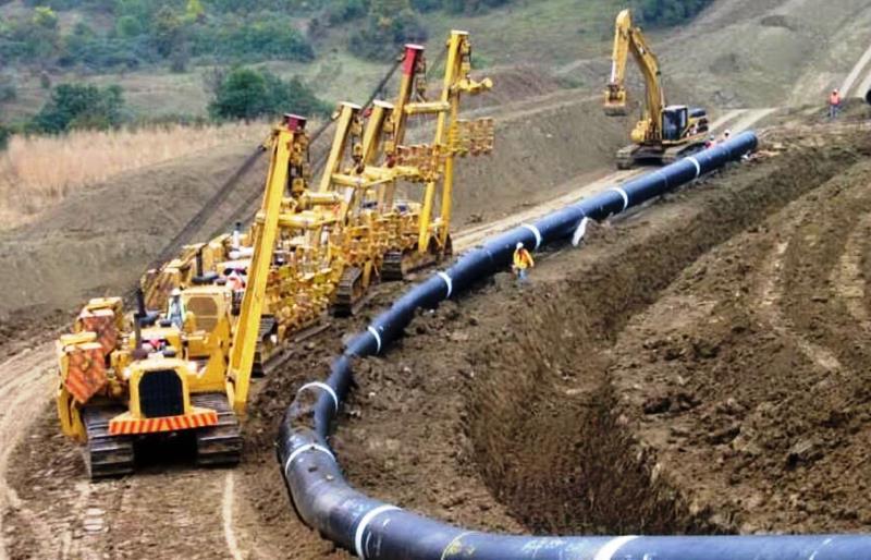 I depositi di carbone sulla Terra sono il risultato di lungo processo di trasformazione.