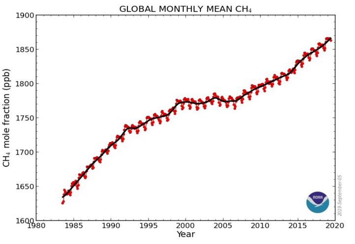 Soluzioni di problemi di datazione del carbonio